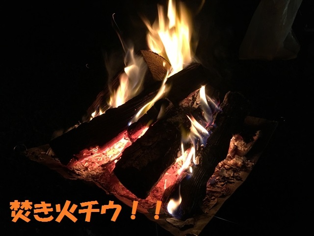 IMG_4833_P.jpg