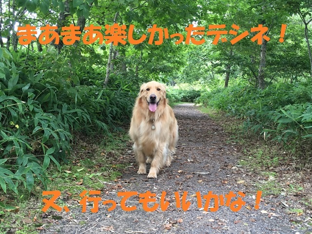 IMG_5614_P.jpg
