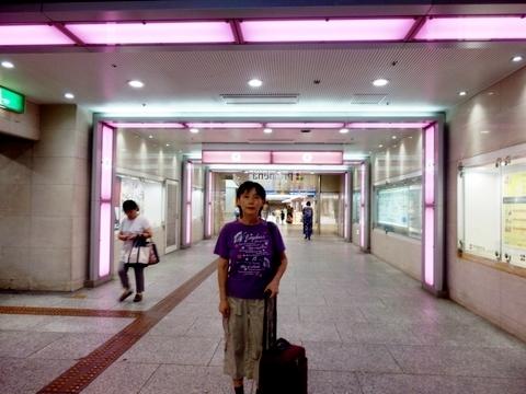 散歩 (52)