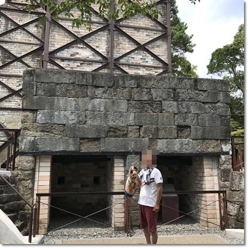 桜えびIMG_0106-20170716