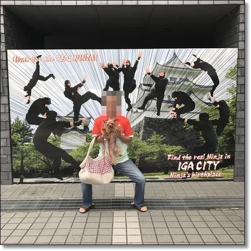 伊賀IMG_1439-20170918
