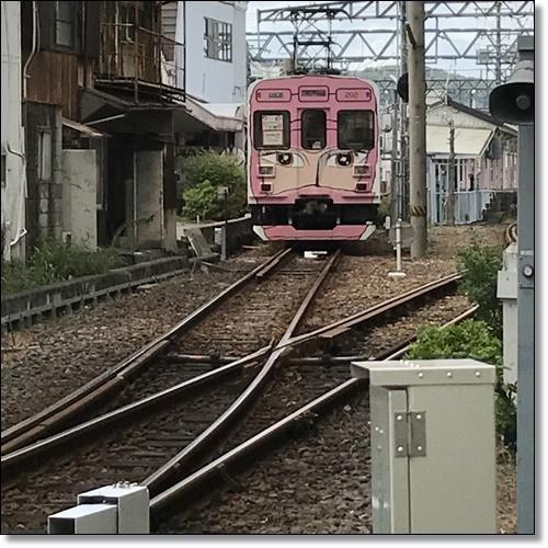 伊賀IMG_1446-20170918