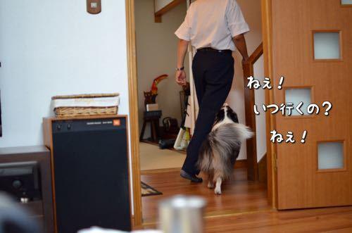 IMG_6863.jpg