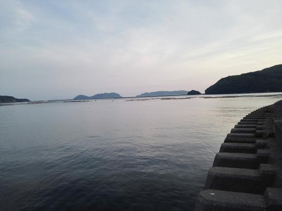 唐津 呼子 名護屋漁港 釣り ハタ アラカブ 朝マズメ