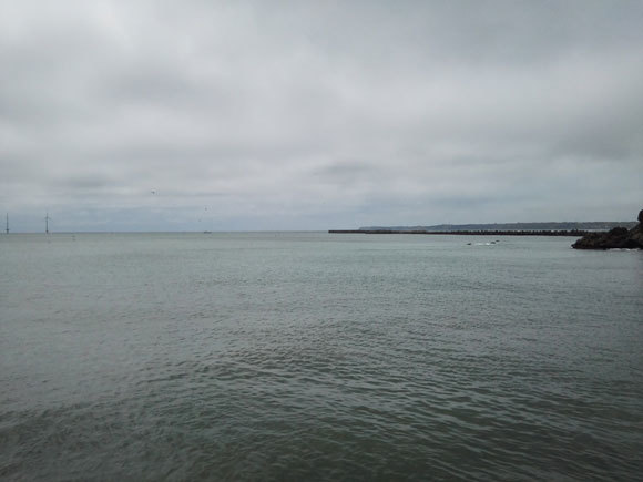 ショゴ カンパチ 外川漁港 銚子 ジギング 青物 ナブラ
