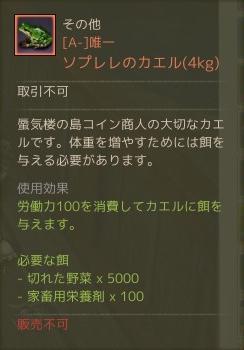 7月13日ソプレレのカエル4