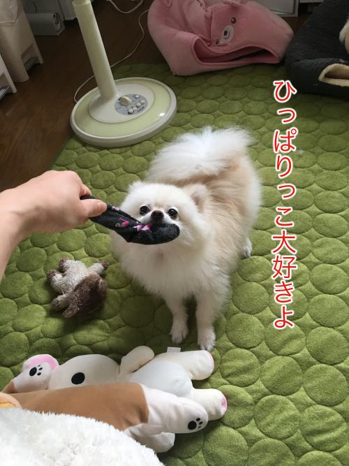 IMG_7744blog.jpg