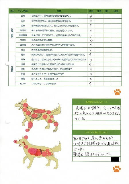 05202017動物病院24