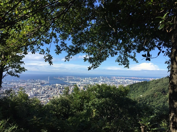 IMG_2713鷹尾山ビュー