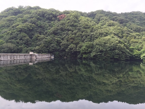 IMG_2851貯水池