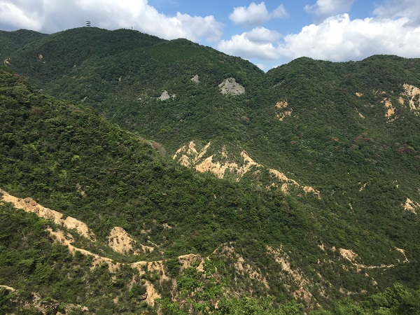 IMG_2968大平山