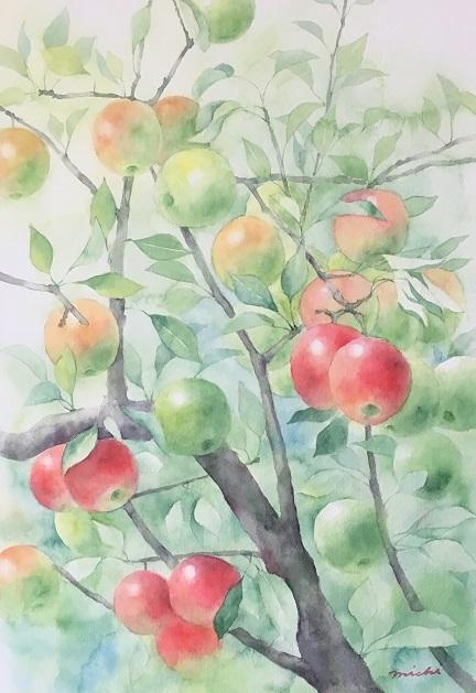 りんご201708 ブログ