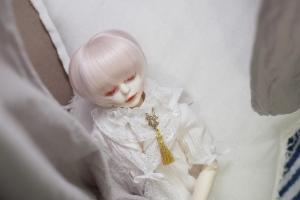 _MG_6563.jpg