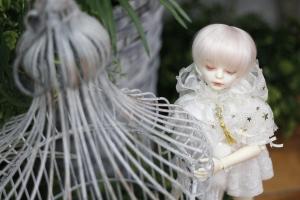 _MG_6693.jpg