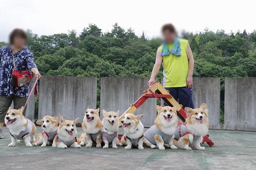 チームあずき☆