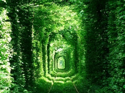 恋のトンネル ウクライナ ユーラシア旅行社サイトより