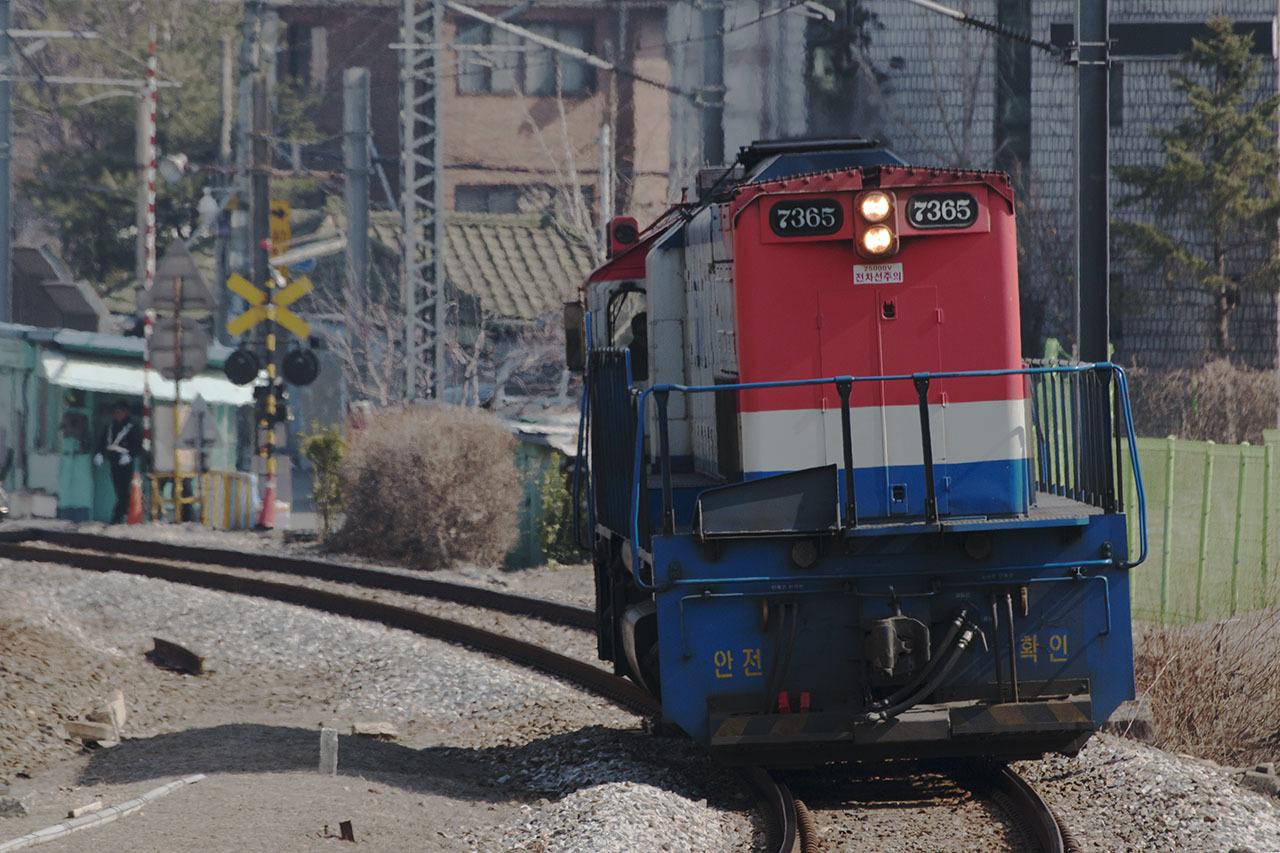 IMG_3898(トリミング・レタッチ)