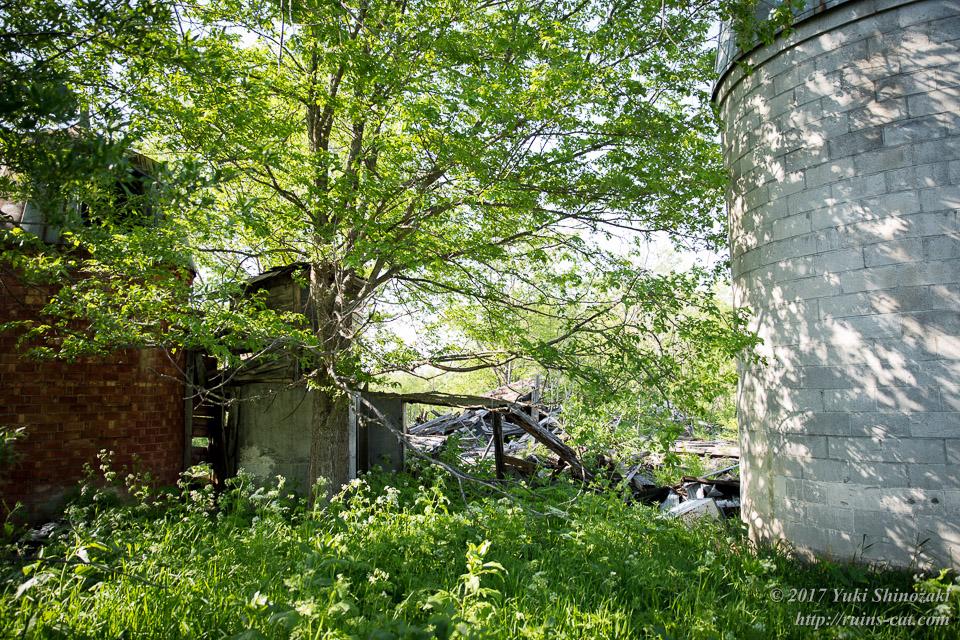 【廃墟写真】西興部村上藻のサイロ付き住宅跡_サイロと倉庫