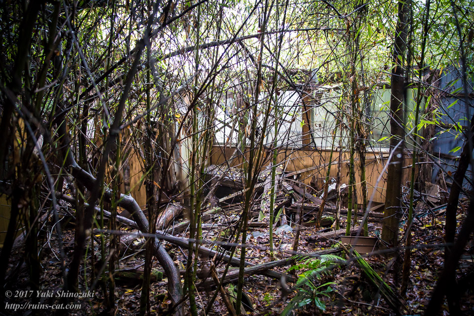 【廃墟写真】K医院_西側の別棟その3。ここが母屋から最も離れている箇所。