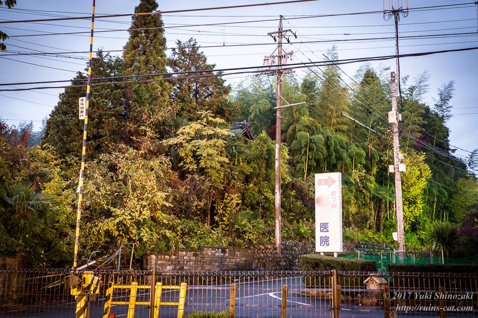【廃墟写真】K医院_線路(名鉄広見線)踏切側からの外観。鬱蒼とした竹林の中に僅かに住居の屋根が見える。
