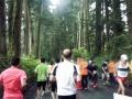 2017日光杉並木マラソン05
