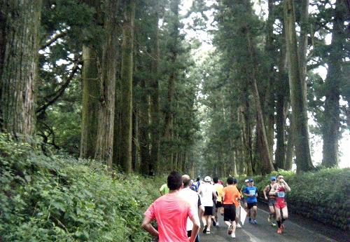 2017日光杉並木マラソン