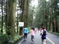 2017日光杉並木マラソン06