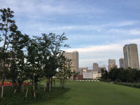2017 8月品川シーサイドテラス (2)
