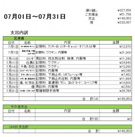 201707支出内訳