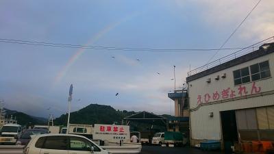 市場で出逢った虹