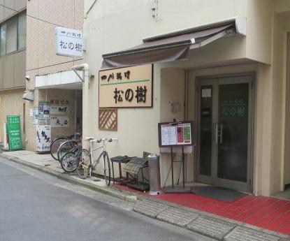 matsunoki1.jpg