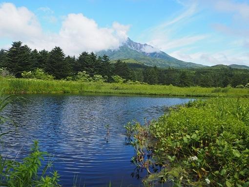 南浜湿原より利尻富士