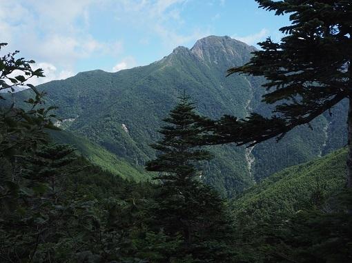 本谷山2658mからの塩見岳