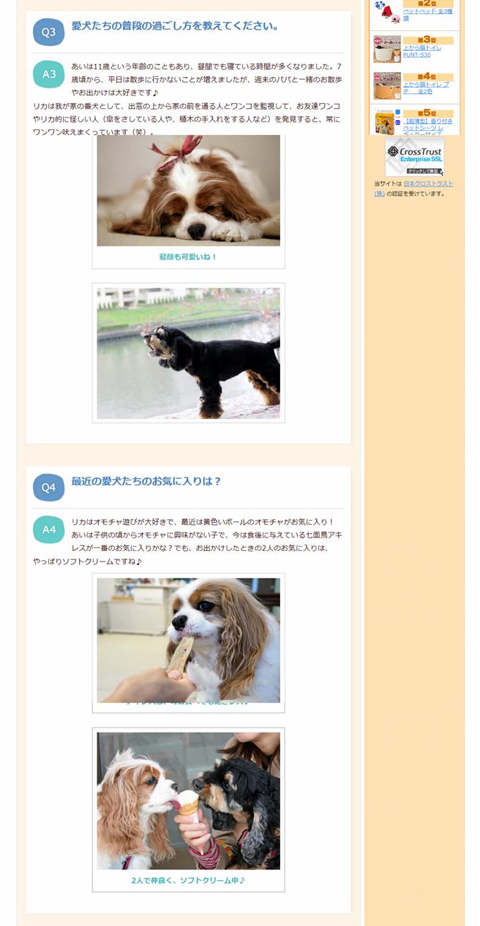 blogSN0024 - 2