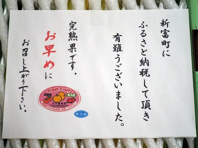 blogP9134182.jpg