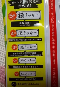 道明寺梅子リターンズ3