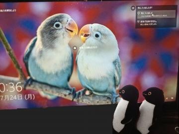 20170724-PC (2)-加工