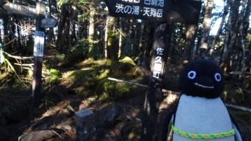 20170528-北八ヶ岳 (7)