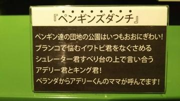 20170911-ぴょんみさんより (10)