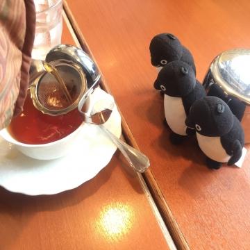 20170916-喫茶店 (5)