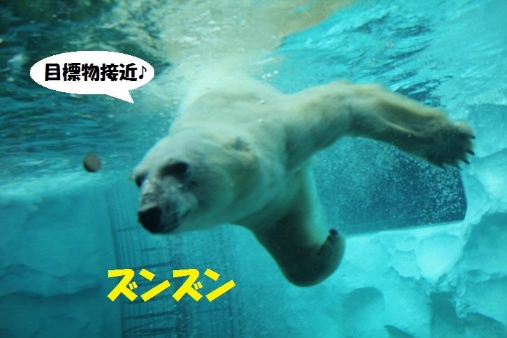 46 - コピー (2)