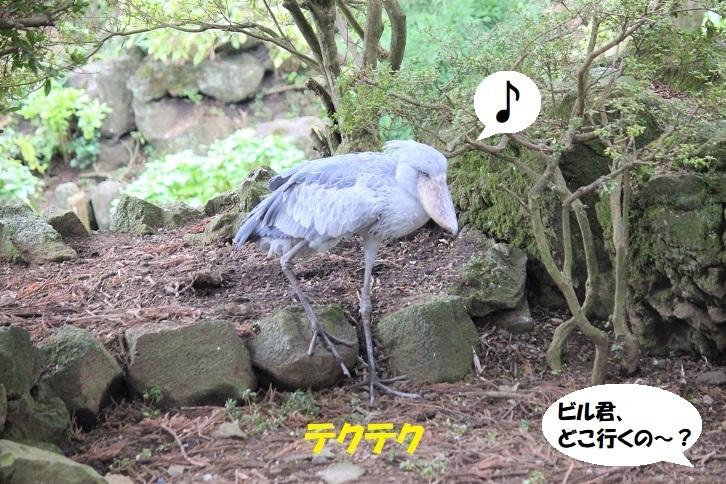 138 - コピー
