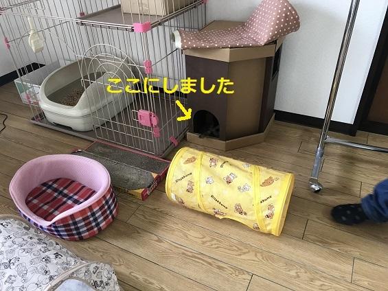 170914005.jpg