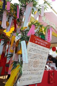 H29070810日本台湾祭り