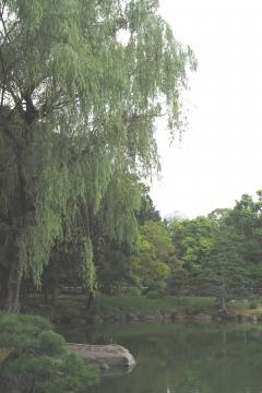 H29081921清澄庭園