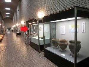 浜松博物館5