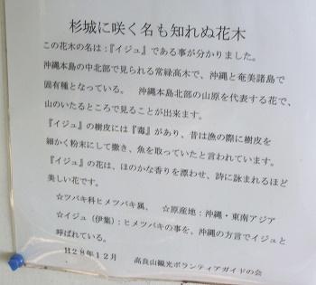 dc091014.jpg