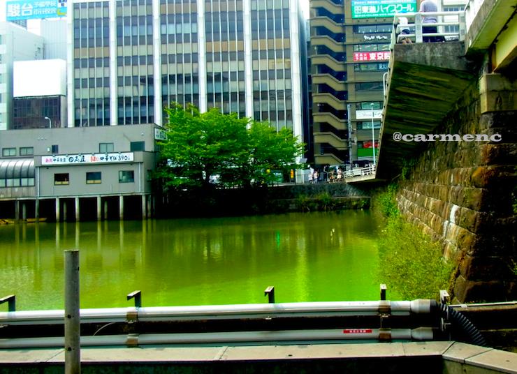 市ヶ谷の川