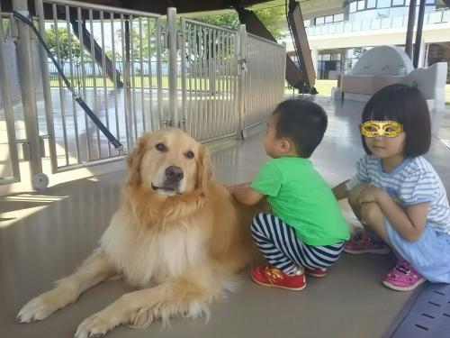 ハローアニマル☆大型犬とともに