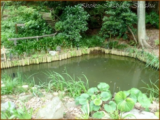 20170807  庭  1    肥後細川庭園